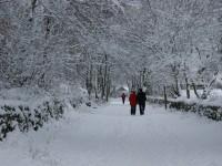 Snowy high peak trail